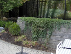 P-DeBlasio-Builders-Outdoor-Living-0153